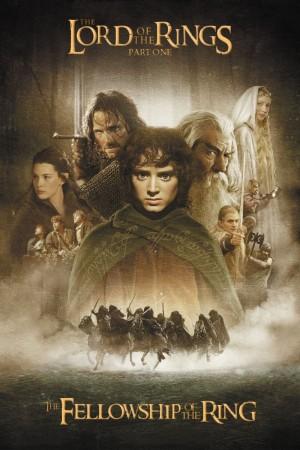 指环王1:魔戒再现 The Lord of the Rings: The Fellowship of the Ring (2001) 中文字幕