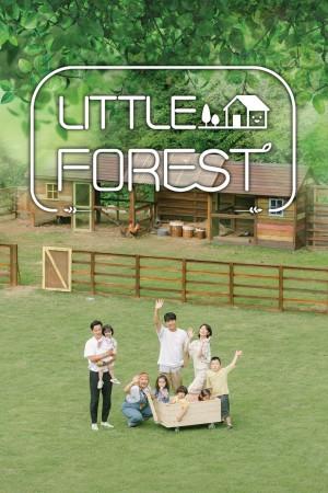 【韩剧】小森林 Little Forest (2019)