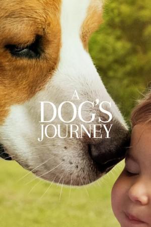 一条狗的使命2 A Dog's Journey (2019) 1080P 中文字幕