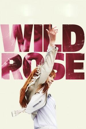 野玫瑰 Wild Rose (2018) 1080P