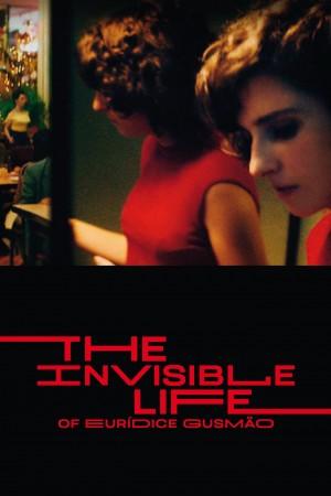 隐形的女人 Vida Invisivel (2019)