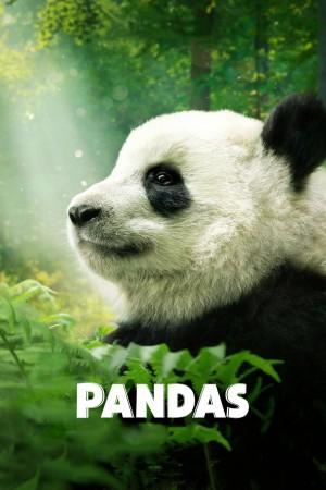 大熊猫 Pandas (2018) 2160P 10.27G