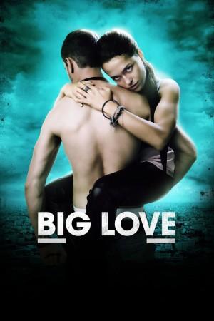 大爱 Big Love (2012)