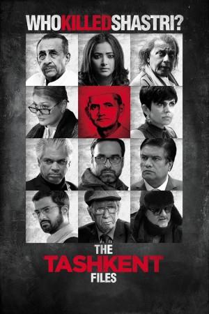 塔什干档案 The Tashkent Files (2019) 1080P