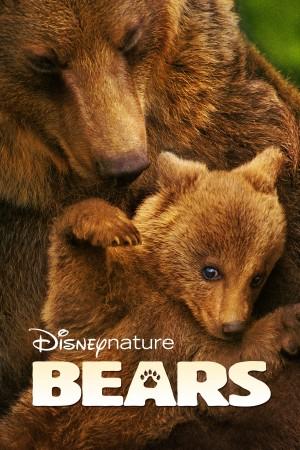 熊世界 Bears (2014) 1080P