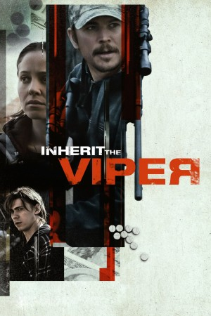 继任蝰蛇 Inherit the Viper (2019)