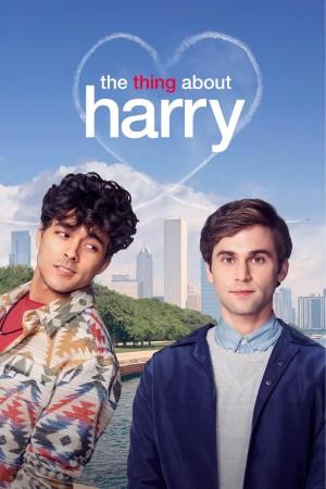 关于哈利的那些事 The Thing About Harry (2020)