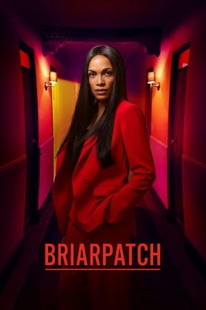 荆棘丛 Briarpatch (2020)