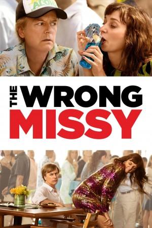 乌龙小姐 The Wrong Missy (2020) Netflix 中文字幕