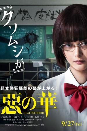恶之华 惡の華 (2019) NETFLIX 中文字幕