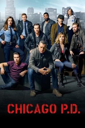 芝加哥警署 第三季 Chicago P.D. Season 3 (2015) 中文字幕