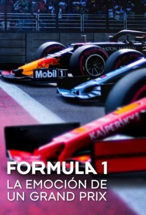 一级方程式:疾速争胜 第一季 Formula 1: Drive to Survive Season 1 (2019) 中文字幕