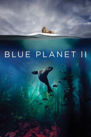蓝色星球2 Blue Planet II (2017) 中文字幕