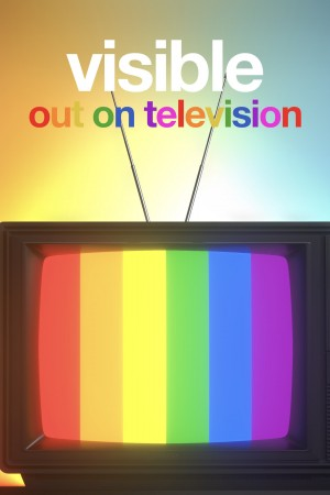 从暗到明:电视与彩虹史 Visible: Out on Television (2020) 中文字幕
