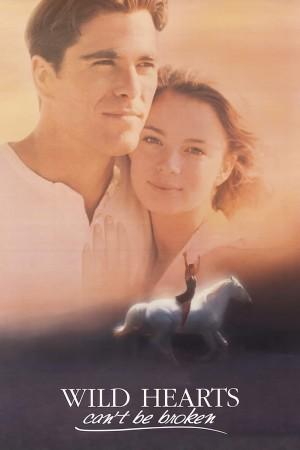 跃马英雄 Wild Hearts Can't Be Broken (1991) 中文字幕