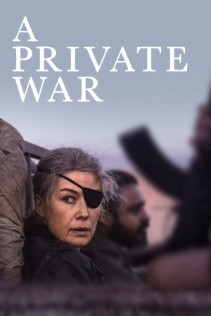 私人战争 A Private War (2018) 中文字幕