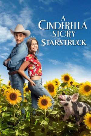灰姑娘的故事:明星之恋 A Cinderella Story: Starstruck (2021) 中文字幕