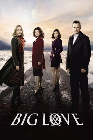 大爱 第五季 Big Love Season 5 (2011) 中文字幕