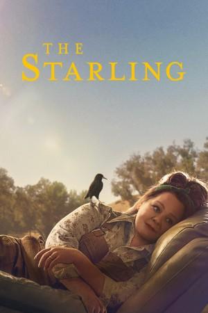 八哥 The Starling (2021) Netflix 中文字幕