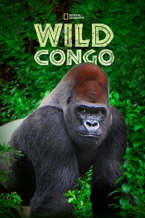 狂野刚果 第一季 Wild Congo Season 1 (2014) 中文字幕