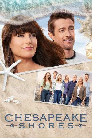 湾畔倾情 第五季 Chesapeake Shores Season 5 (2021) Netflix 中文字幕