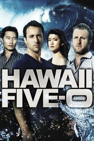 夏威夷特勤组 第二季 Hawaii Five-0 Season 2 (2011) 中文字幕