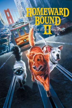 看狗在说话之旧金山历险记 Homeward Bound II: Lost in San Francisco (1996) 中文字幕