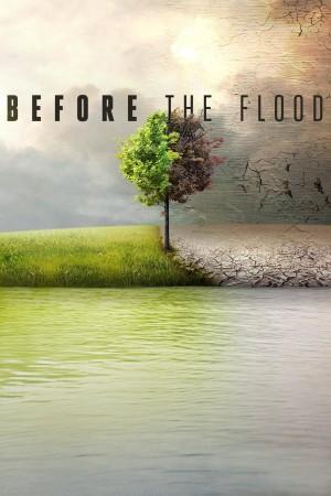 洪水泛滥之前 Before the Flood (2016) 中文字幕