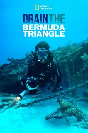 抽空百慕大三角洲 Drain the Bermuda Triangle (2014) 中文字幕