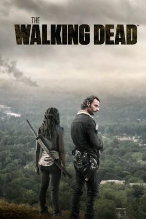 行尸走肉 第六季 The Walking Dead Season 6 (2015) 中文字幕