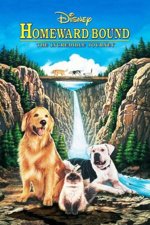 看狗在说话 Homeward Bound: The Incredible Journey (1993) 中文字幕