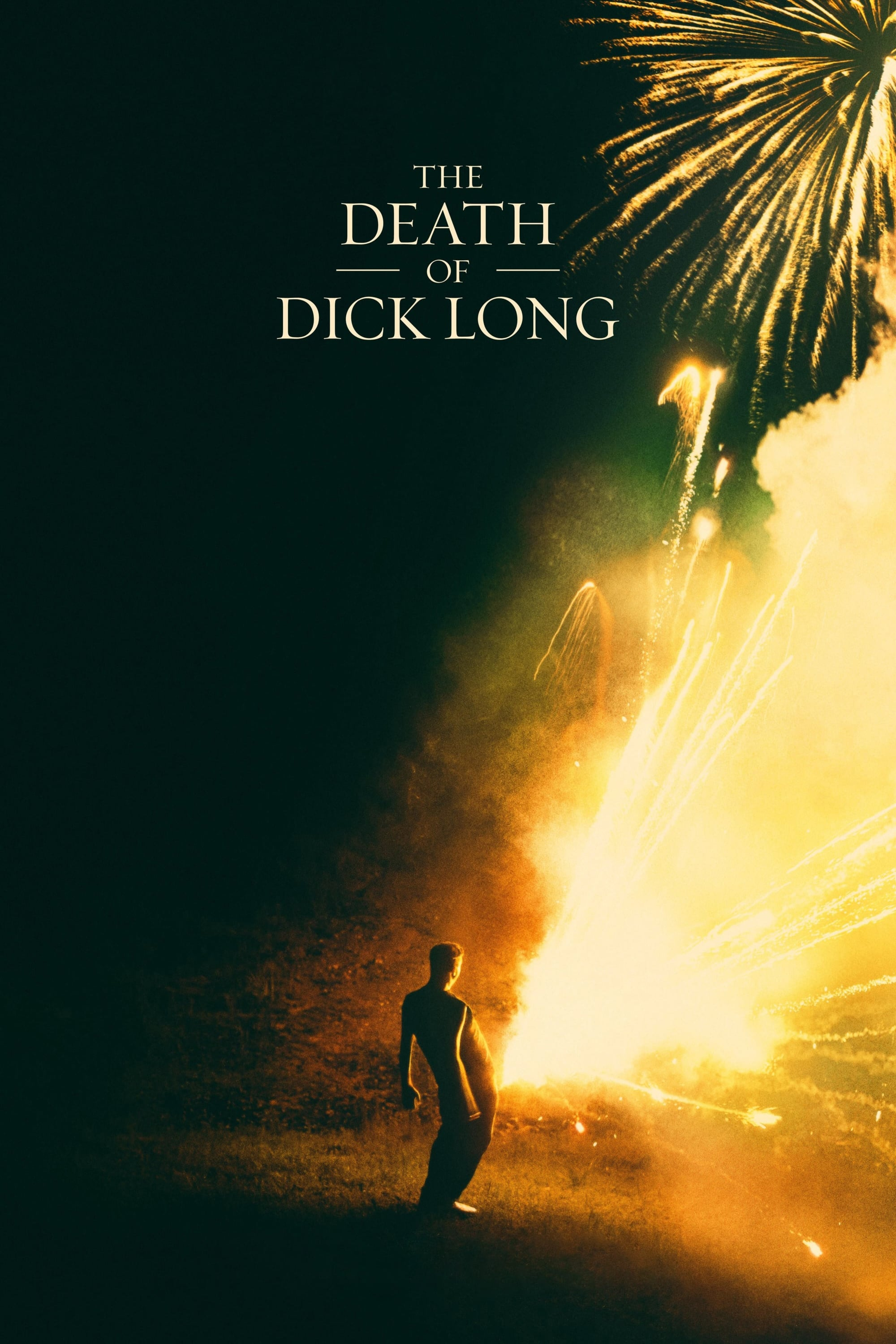 迪克·朗之死 The Death of Dick Long (2019) 1080P
